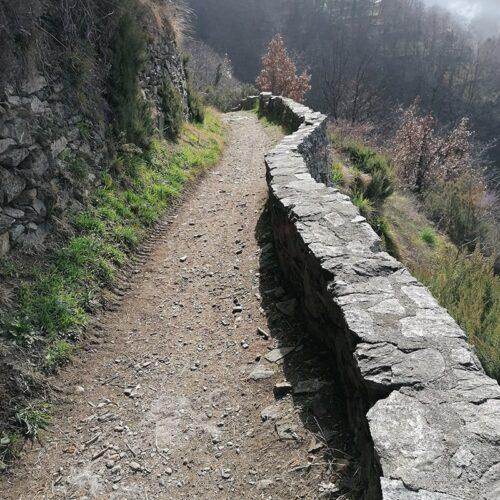 03 Escursioni personalizzate | Sabrina Pastacaldi - Proposte escursioni